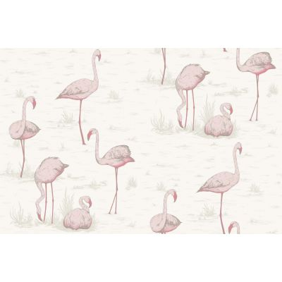 Papel pintado Flamingos
